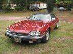 1987 Jaguar XJS for sale 101227044