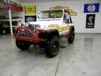 1987 Jeep Wrangler for sale 101478680