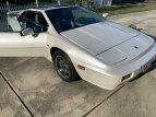1988 Lotus Esprit Turbo for sale 101619777