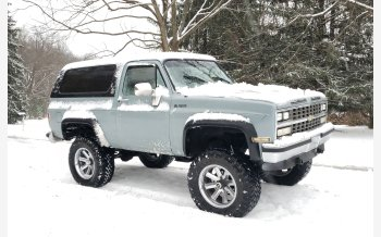 1989 Chevrolet Blazer 4WD for sale 101423755