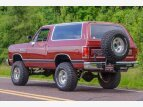 1989 Dodge Ramcharger for sale 101516152