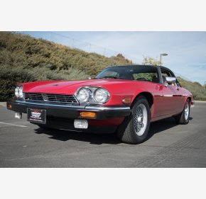 1989 Jaguar XJS V12 Convertible for sale 101054228