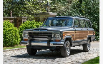 1989 Jeep Grand Wagoneer for sale 101122046