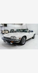 1990 Jaguar XJS V12 Convertible for sale 101452320