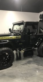 1995 Jeep Wrangler 4WD Rio Grande for sale 101317024
