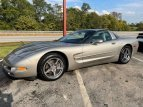 1998 Chevrolet Corvette for sale 101590440
