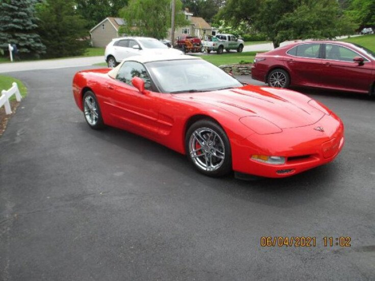 1999 Chevrolet Corvette for sale 101590892