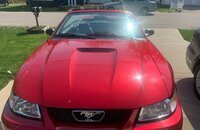 2000 Ford Mustang GT Convertible for sale 101491328