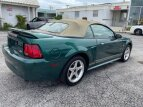2000 Ford Mustang Convertible for sale 101544730