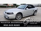 2001 Ford Mustang for sale 101555359
