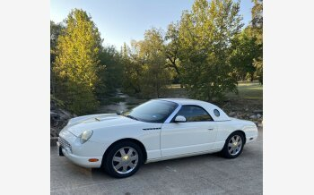 2002 Ford Thunderbird for sale 101404958