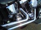 2002 Harley-Davidson Softail for sale 200961864