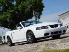 2003 Ford Mustang for sale 101490192
