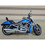 2004 Harley-Davidson V-Rod for sale 200583071