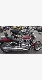 2004 Harley-Davidson V-Rod for sale 200663793
