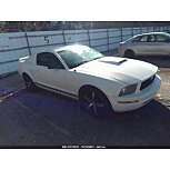 2005 Ford Mustang Coupe for sale 101631575