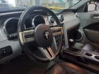 2006 Ford Mustang for sale 101359503