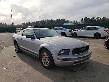 2006 Ford Mustang Coupe for sale 101506469