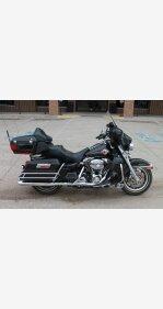 2006 Harley-Davidson Shrine for sale 200688104