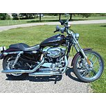 2006 Harley-Davidson Sportster for sale 200775511