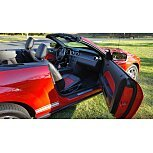 2007 Ford Mustang Shelby GT500 Convertible for sale 100762504