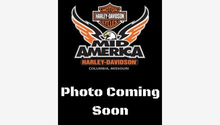 2007 Harley-Davidson Sportster for sale 200651567