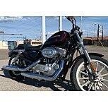 2007 Harley-Davidson Sportster for sale 200731952