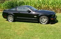 2008 Ford Mustang Shelby GT500 Coupe for sale 101231023