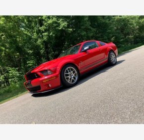 2008 Ford Mustang Shelby GT500 for sale 101423380