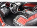 2008 Ford Mustang Shelby GT500 for sale 101504304