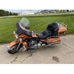 2008 Harley-Davidson Sportster 1200 Custom 105th Anniversary for sale 201094830