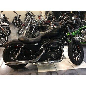 2009 Harley-Davidson Sportster for sale 200816348