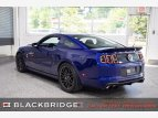 2013 Ford Mustang for sale 101536218