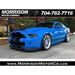 2013 Ford Mustang Shelby GT500 Coupe for sale 101618555
