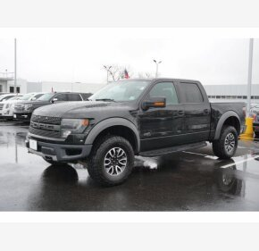 2014 Ford F150 for sale 101488620
