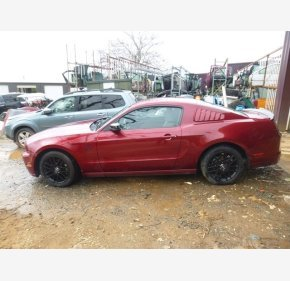 2014 Ford Mustang Coupe for sale 101096628