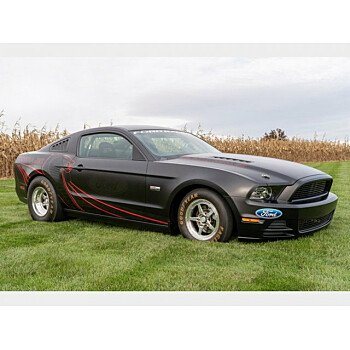 2014 Ford Mustang for sale 101282277