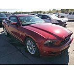2014 Ford Mustang Coupe for sale 101629406