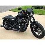 2014 Harley-Davidson Sportster 883 for sale 200785407