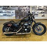 2014 Harley-Davidson Sportster for sale 201048916