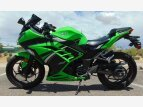 2014 Kawasaki Ninja 300 for sale 201080882