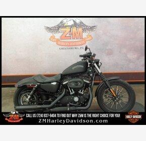 2015 Harley-Davidson Sportster for sale 200981203
