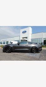 2016 Ford Mustang Shelby GT350 Coupe for sale 101243881