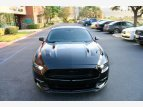 2016 Ford Mustang for sale 101523683