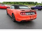 2016 Ford Mustang for sale 101538918
