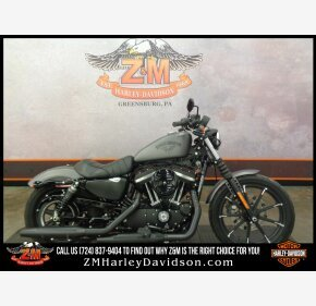 2016 Harley-Davidson Sportster for sale 200845073