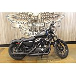 2016 Harley-Davidson Sportster for sale 200957802