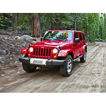 2016 Jeep Wrangler 4WD Unlimited Rubicon for sale 101185764