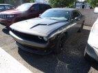 2017 Dodge Challenger SXT Plus for sale 101562888