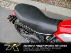 2017 Ducati Scrambler 800 for sale 201047401